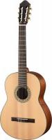 Walden Konzertgitarre WAN550EW