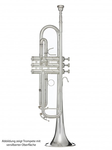B&S B-Trompete Challenger II 31372LR-1-0W